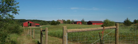 Pasture and buildings of Observatory Hill Farm