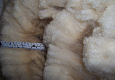 Zirconia's classic Corriedale fleece